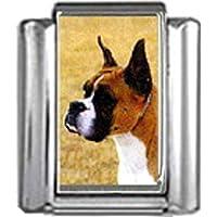 Stylysh Charms Boxer Dog Photo Italian 9mm Link DG102