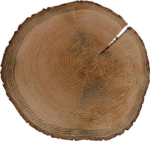 Holzscheibe Baumscheibe /Ø 15-20 cm geschliffen 2 cm dick Rindenbrett Holz Brett
