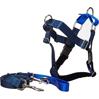 Amazon Com 2 Hounds Design Freedom No Pull Dog Harness