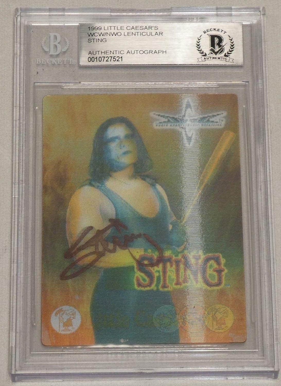 STING WCW WWE SIGNED AUTOGRAPH  Metallic PHOTO PSA DNA COA
