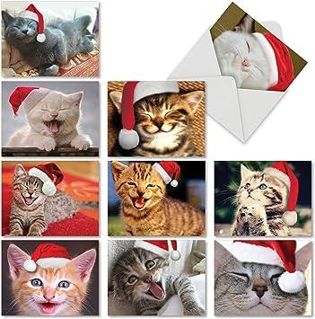 Cat Drawing 10-pack Original Art Kitten Note Cards