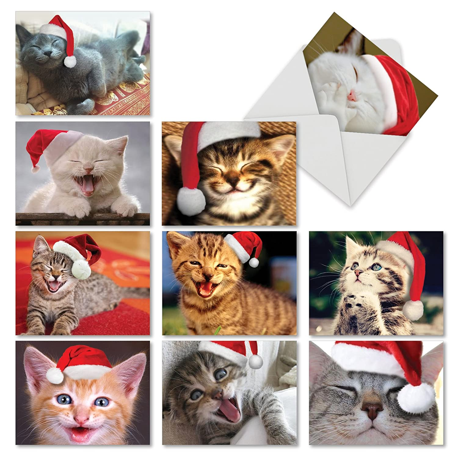 Christmas Smitten Kittens' Holiday Notes, Boxed Set of 10 Sweet Kitties  with Santa Caps 4 x 5.12 inch, Assorted Christmas Cats Holiday Greeting  Cards, ...