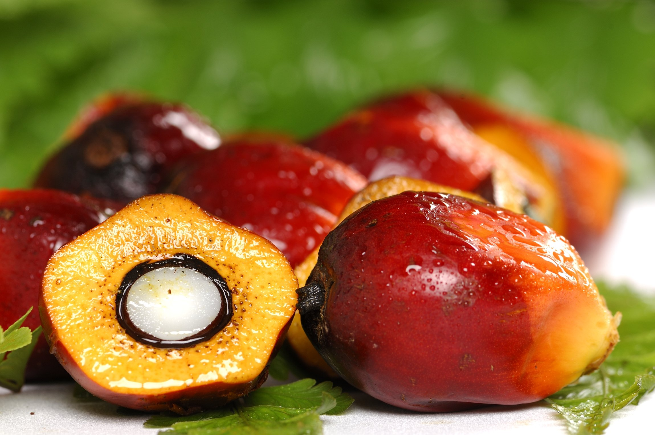 OKONATUR 100% Extra Virgin Red Palm Oil - 16 Fl Oz