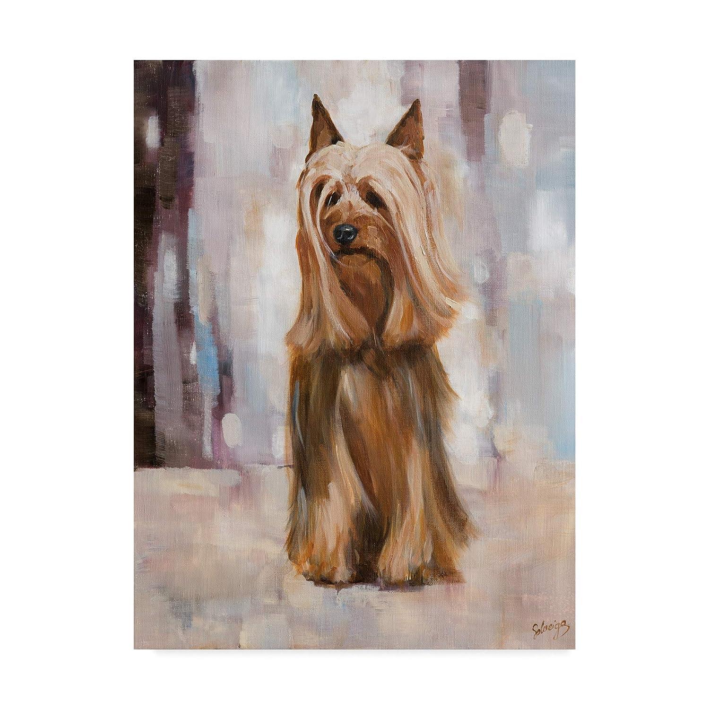 Trademark Fine Art Silky Terrier 1 by Solveiga 1, 14x19Inch