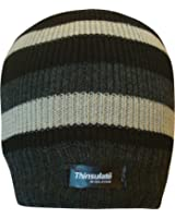 Mens Striped Thermal Knit Fleece Lined Thinsulate Winter Beanie Hat (Grey & Stone)