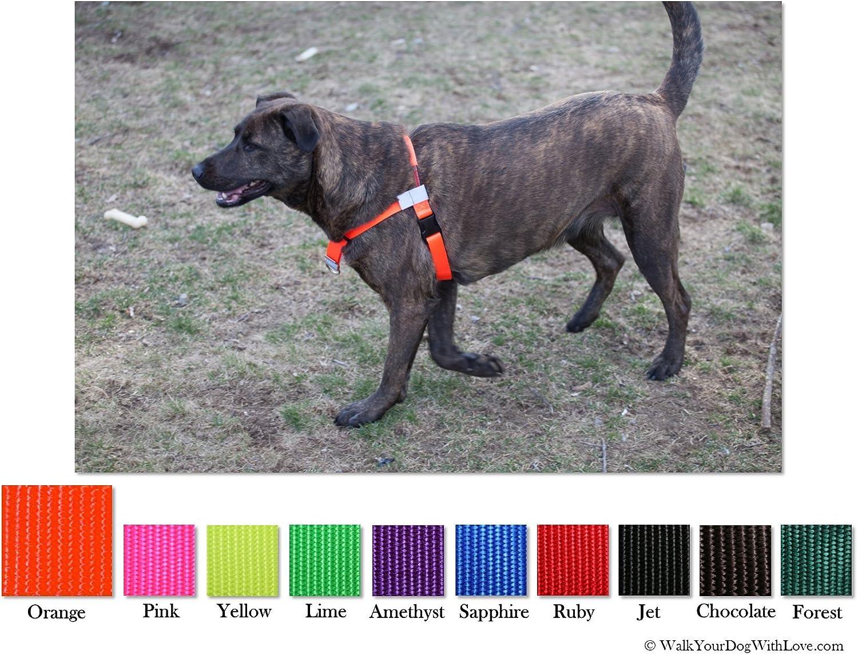 Walk tu Perro con Amor sportso Doggo no-Pull arnés para Perros, 3 ...
