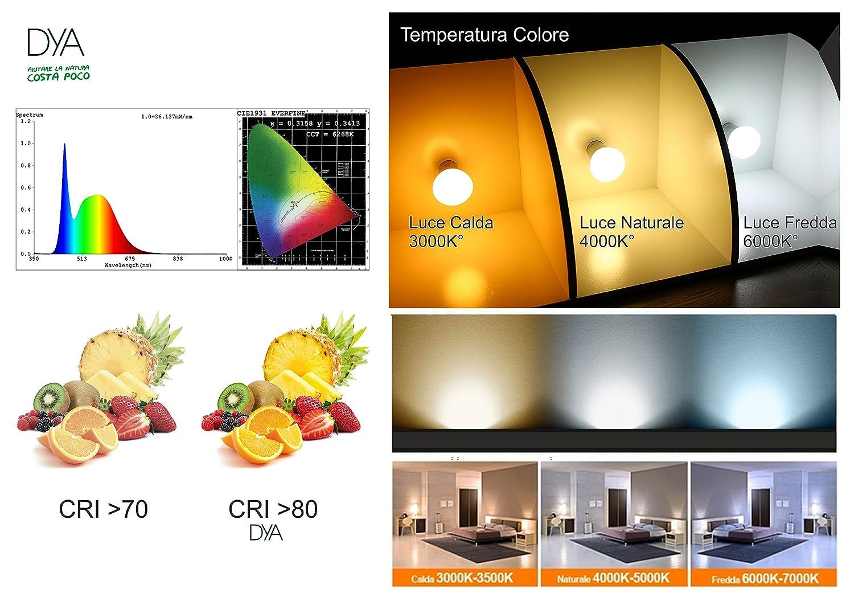 luz natural 4000 K /° 6W 570 l/úmenes casquillo E14 Juego de 10 Bombillas LED Bola G45 LED