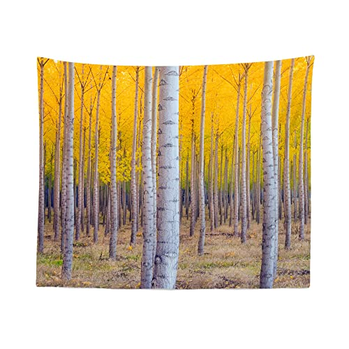 Birch Tree Tapestry Wall Hanging Yellow Forest Nature Forrest Tapestries Dorm Room Bedroom Decor Art – Printed in the USA – Small to Giant Sizes