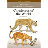 Carnivores of the World: Second Edition (Princeton Field Guides)