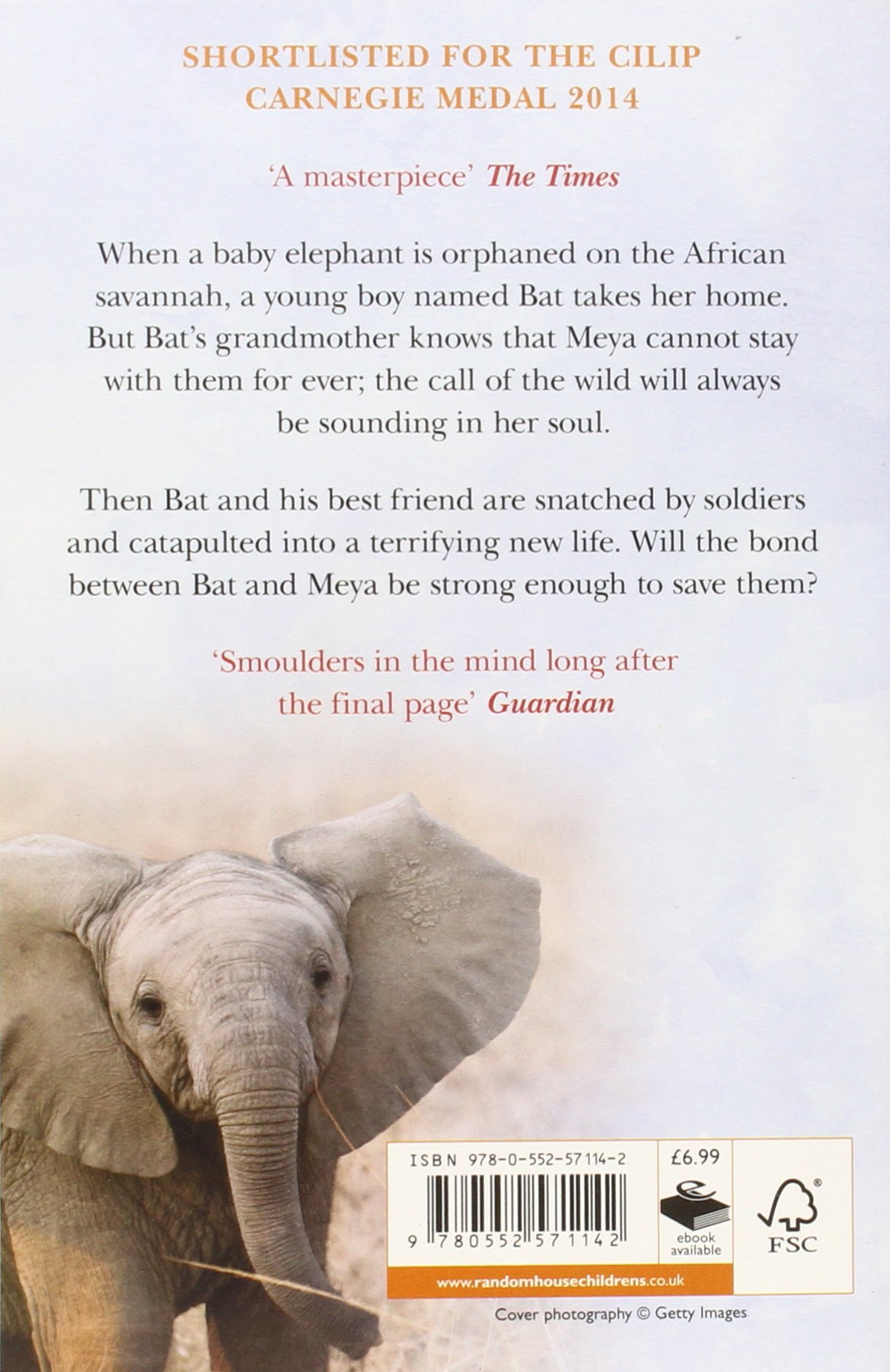 The Child's Elephant: Amazon: Rachel Campbelljohnston:  9780552571142: Books