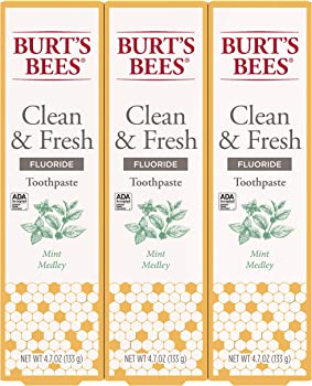 3-Pack Burt's Bees 4.7oz Natural Flavor Toothpaste with Fluoride