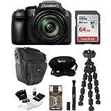 Panasonic LUMIX FZ80 4K Long Zoom Camera (18.1 Megapixels, 60 X 20-1200mm Lens) + 64GB Accessory Bundle