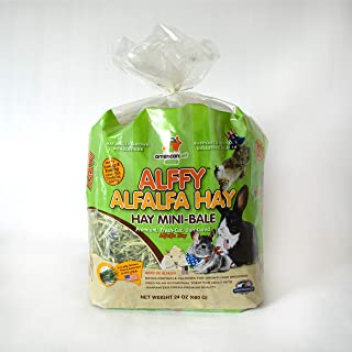 product image for Alffy Alfalfa Hay, 5Lb, Green