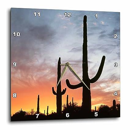 3drose Arizona Organ Pipe Cactus Saguaro Cacti Sunset Reloj De Pared