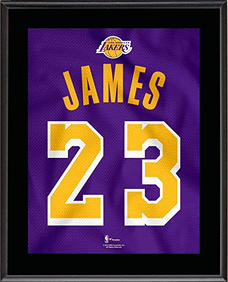 ded15e214 LeBron James Los Angeles Lakers 10.5 quot  x 13 quot  Purple 2018-19 Jersey  Style