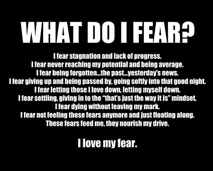 Amazon What Do I Fear Motivational Inspirational Quotes Poster Simple Fear Quotes