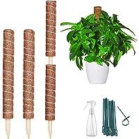 LYFETC Tutores para Plantas Trepadoras 40cm 2 Piezas y 60cm 2 Piezas Fibra de Coco Soporte para Plantas Interior 200cm…
