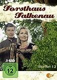 Forsthaus Falkenau - Staffel 12 (Jumbo Amaray - 3 DVDs)