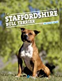 Le Staffordshire Bull Terrier