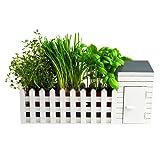 Indoor Allotment Herb Garden Set