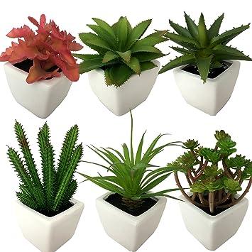 Agaven Sukkulenten Set 12-20cm 5 Stück sortiert naturgetreu künstlich Kaktus