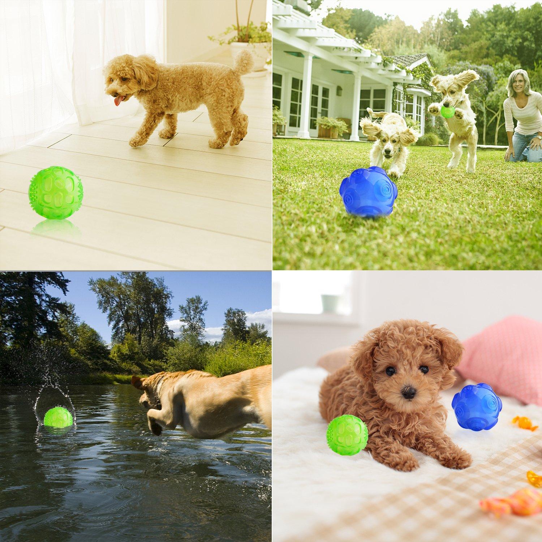 Balones Para Perros Juguetes Lauva Juegos Interactivos De Goma