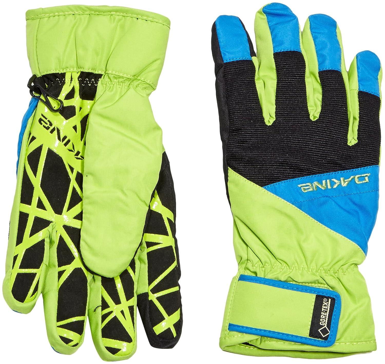 Dakine Herren Handschuhe Impreza Glove