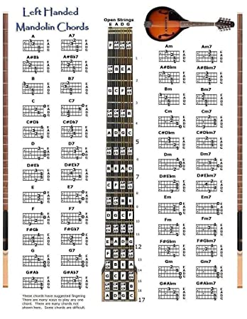AmazonCom Left Handed Mandolin Chords Chart  Note Locator