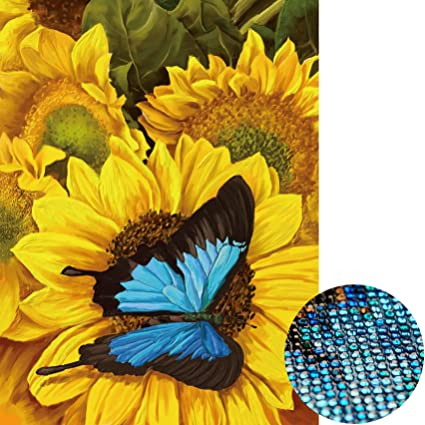 Diamond Painting DIY 5D Special Shape Rhinestones ABEUTY Red Blue Flowers /& Butterfly Partial Drill Crystal Diamond Art Kits