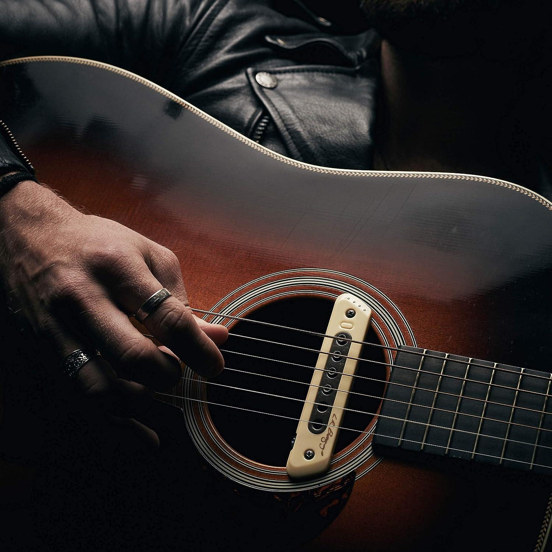 Musical Instruments Electric Guitar Parts ghdonat.com L.R 10-FT ...