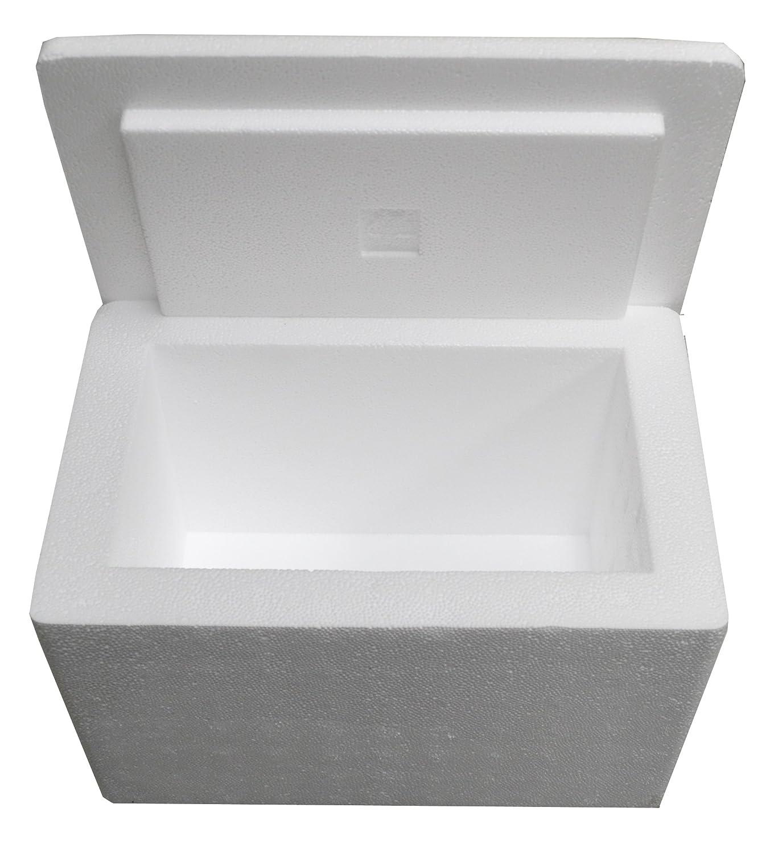 Amazon.com: Refrigerador aislante de poliestireno de 12 ...