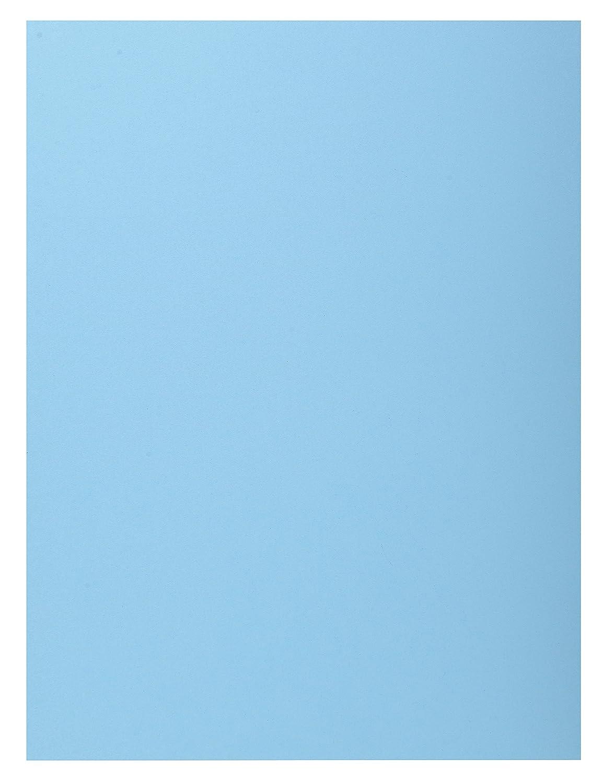 Exacompta 339006E - Lote de Color 50 Subcarpetas Super 250 con Solapa, Color de Azul Claro 692aa3