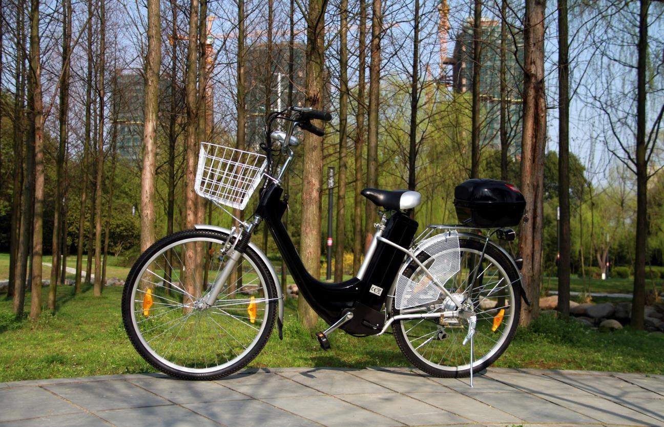 Pedelec - Bicicleta eléctrica, 250 vatios / 36 voltios - Bicileta ...