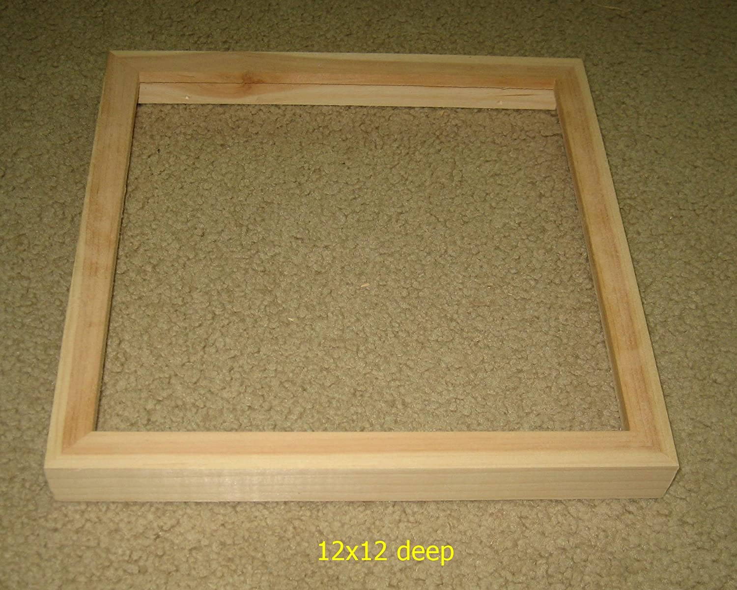 Amazon.com: 12x12 picture frame with DEEP rabbet for canvases ...