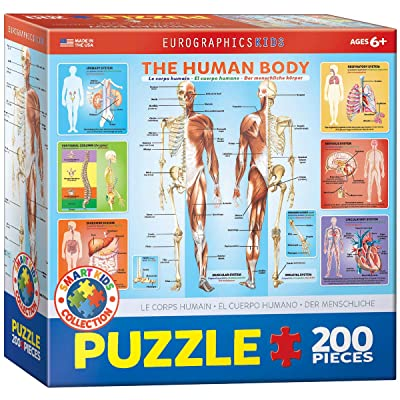 EuroGraphics Human Body Jigsaw Puzzle (200-Piece): Toys & Games