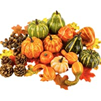 Toopify Artificial Pumpkins and Gourds, 13PCS Assorted Lifelike Pumpkins, Artificial Vegetables for Decorating Fall Craft Thanksgiving Wedding Centerpieces