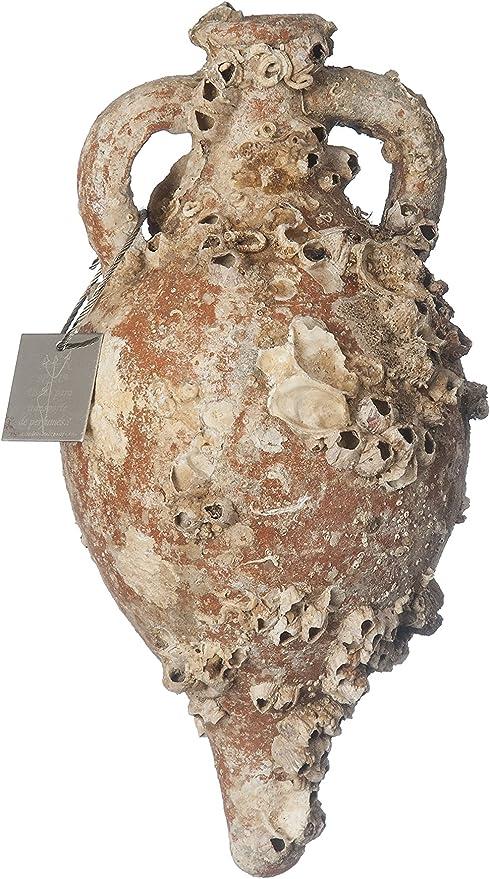 Ánfora Ágora MD36 25x13cm con Vida Marina Antiguas Decoración Marinera. Decoración hogar, Decoración Jardin, Decoración Exterior, Regalos Originales.: Amazon.es: Hogar