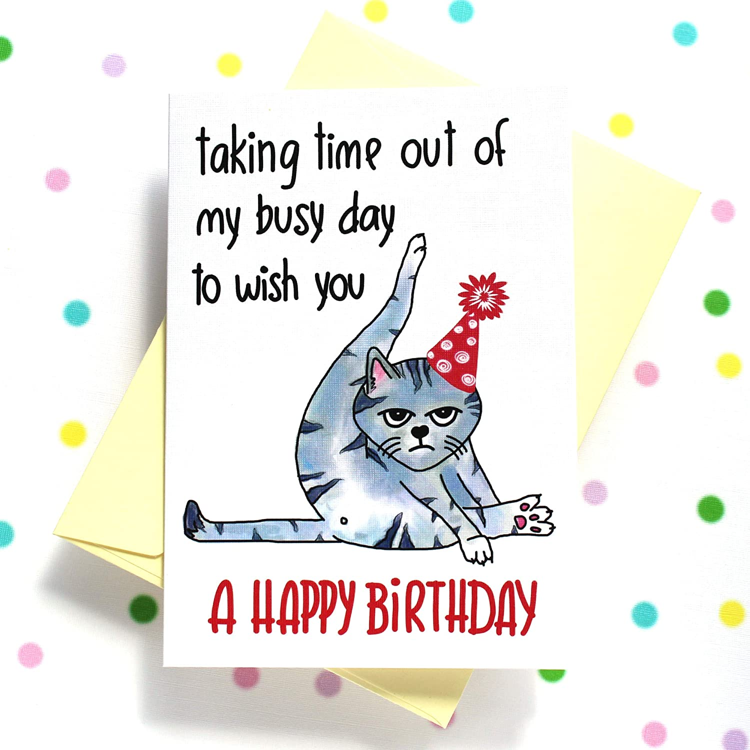 Funny Birthday Card from Cat, Humorous Grumpy Cat Birthday Card to Cat  Lover - Taking Time out of My Busy Day to Wish You a Happy Birthday Card -