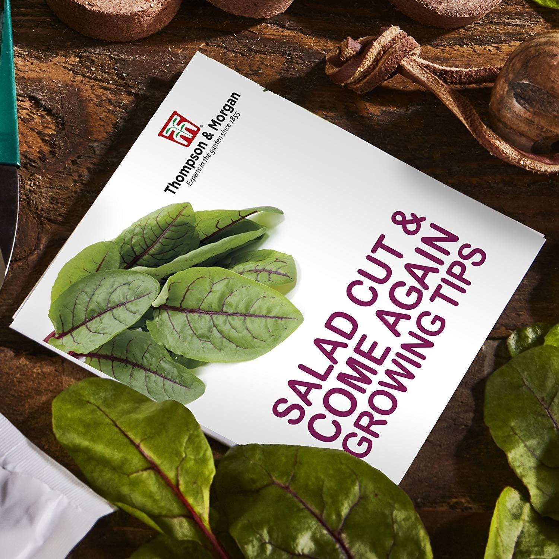 Thompson & Morgan Cultivo Kits Regalo Cajas - Cortar & Incluye de ...