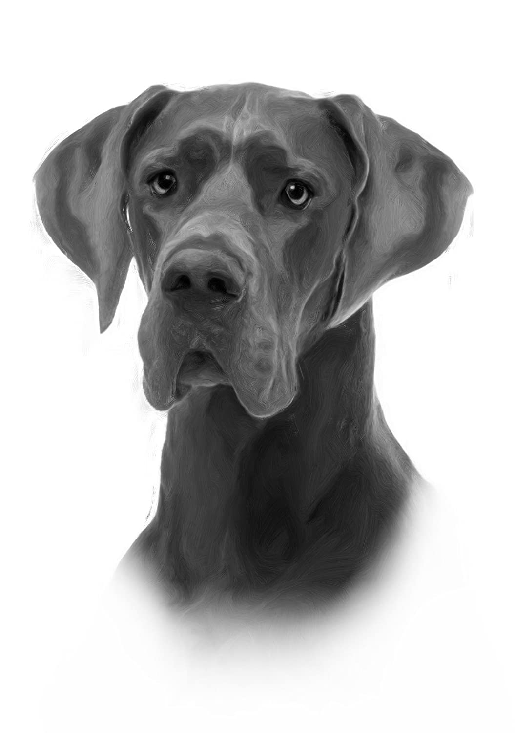 Great Dane Drawing Print Picture. MO-T-VATIONAL