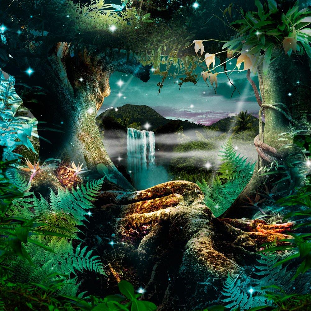 写真バックドロップ – Enchanted Forest – 10 x 10 ft。 – 100 %シームレスなポリエステル   B00NYFW7WC