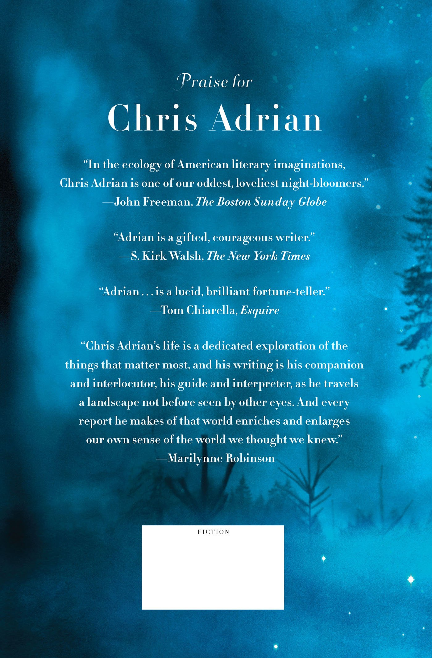 The Great Night: A Novel: Chris Adrian: 9780374166410: Amazon: Books