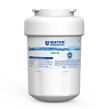 .com - waterspecialist mwf replacement refrigerator water ...