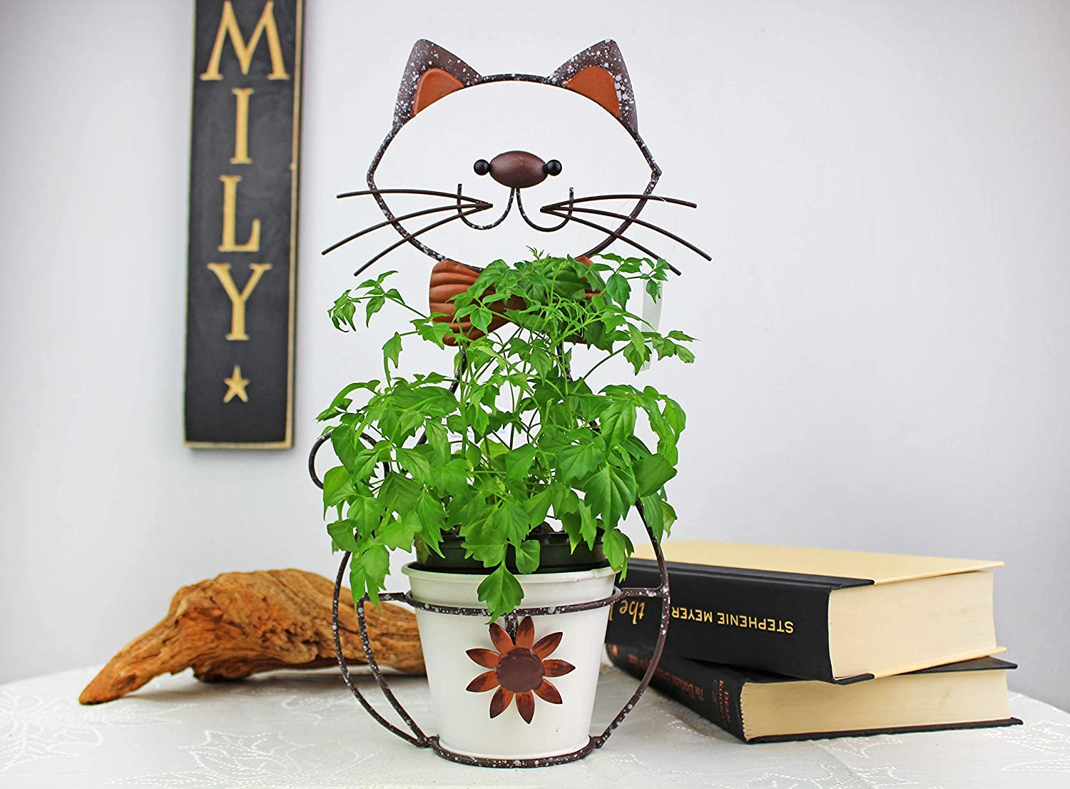 Cool Cat Metal Cat Plant Stand for 4 Inch Planters – Animal D cor for Indoor or Outdoors – Perfect for Succulents, Tropical Plants, Orchids, Herbs or Other Plants in Your House, Garden or Patio
