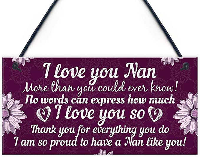 Lovely Home Accessory Gift Sign for Grandma from Grandchildren Flowers Design 10x5 Meijiafei I Love My Nanny Such a lot Shes as Special as can be