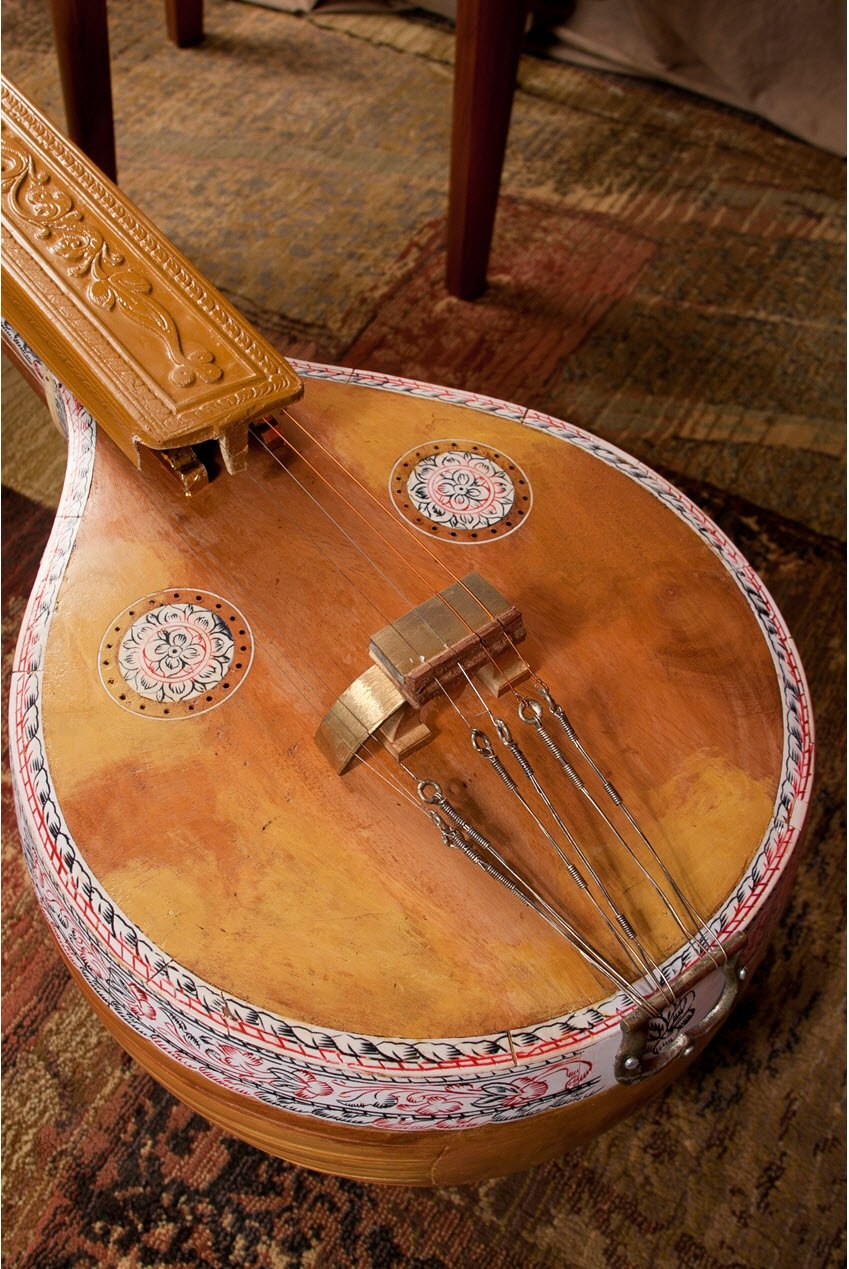 Veena Body Detail