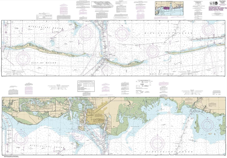 Amazon.com : Paradise Cay Publications NOAA Chart 11374 ...
