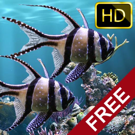 3d Aquarium Live Wallpaper: HD: Amazon.es: Appstore Para Android