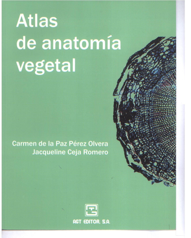 Atlas De Anatomia Vegetal: Teresa Caldeira: Amazon.com.mx: Libros