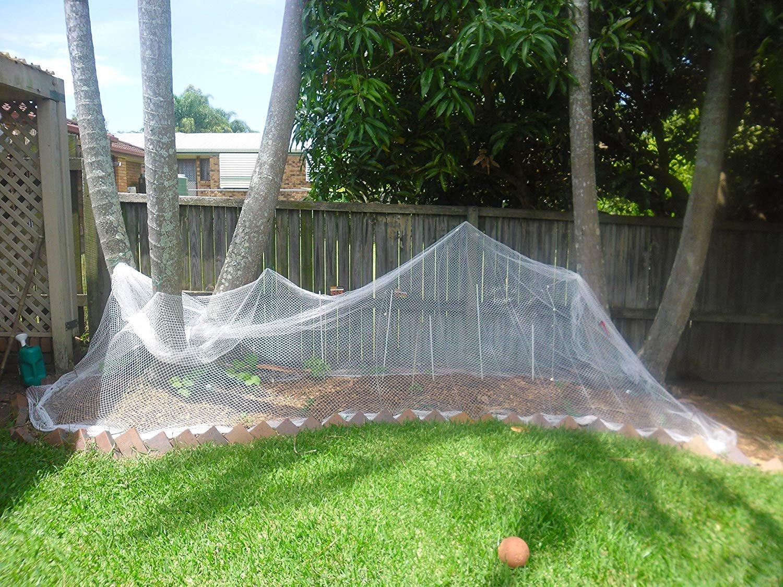 White13 ftx32 ft Garden Plant Netting Anti-Bird Netting Protect Plants Fruit Trees Vegetables Flowers Seedlings from Birds Rodents Deer